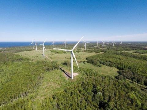 Enefit Green Iru Power plant